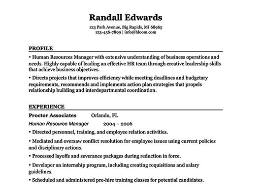 resume template 205 two pages version